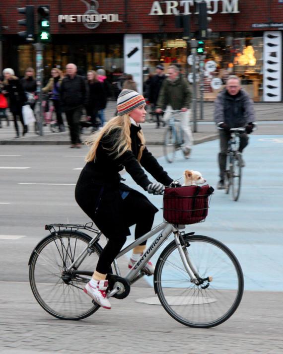 danish bicyclist lady